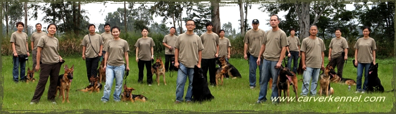 P.C.T.A. Dog Trainer Course